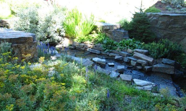 Ботанический сад в Айдахо