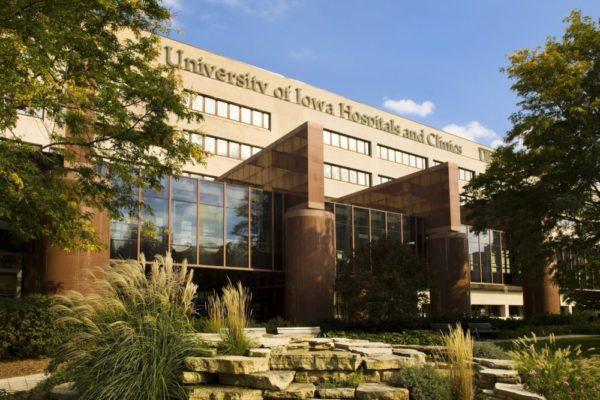 Университет штата Айовы