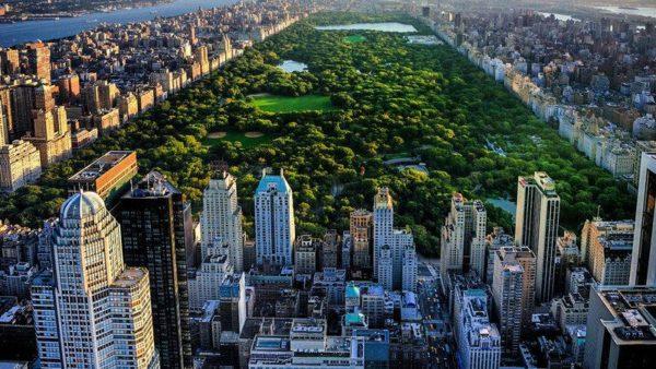 Нью-Йорк парк